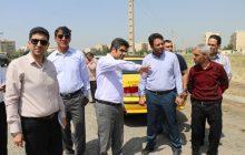 اجرای طرح جهادی پاکداشت شهر در شهرک ناز فردیس