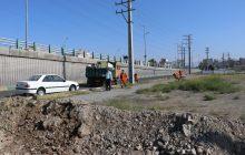 پاکسازی شهرک راه آهن فردیس/ اجرای طرح پاکداشت شهر ادامه دارد