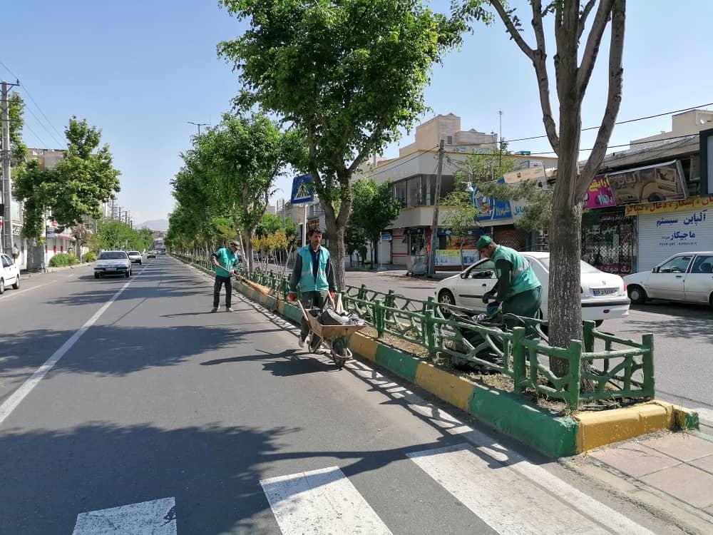 اجرای طرح جهادی پاکداشت شهر در دو محله از مناطق شهرداری فردیس