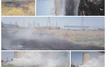 ۴ هزار متر از علفزارهای نیروگاه منتظر قائم آتش گرفت