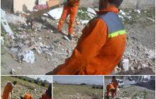 پاکسازی و نظافت زمین های خالی هفت دستگاه انجام شد